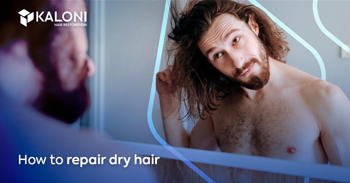 repair dry hair